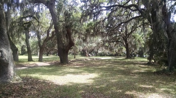 mossy oaks cumberland