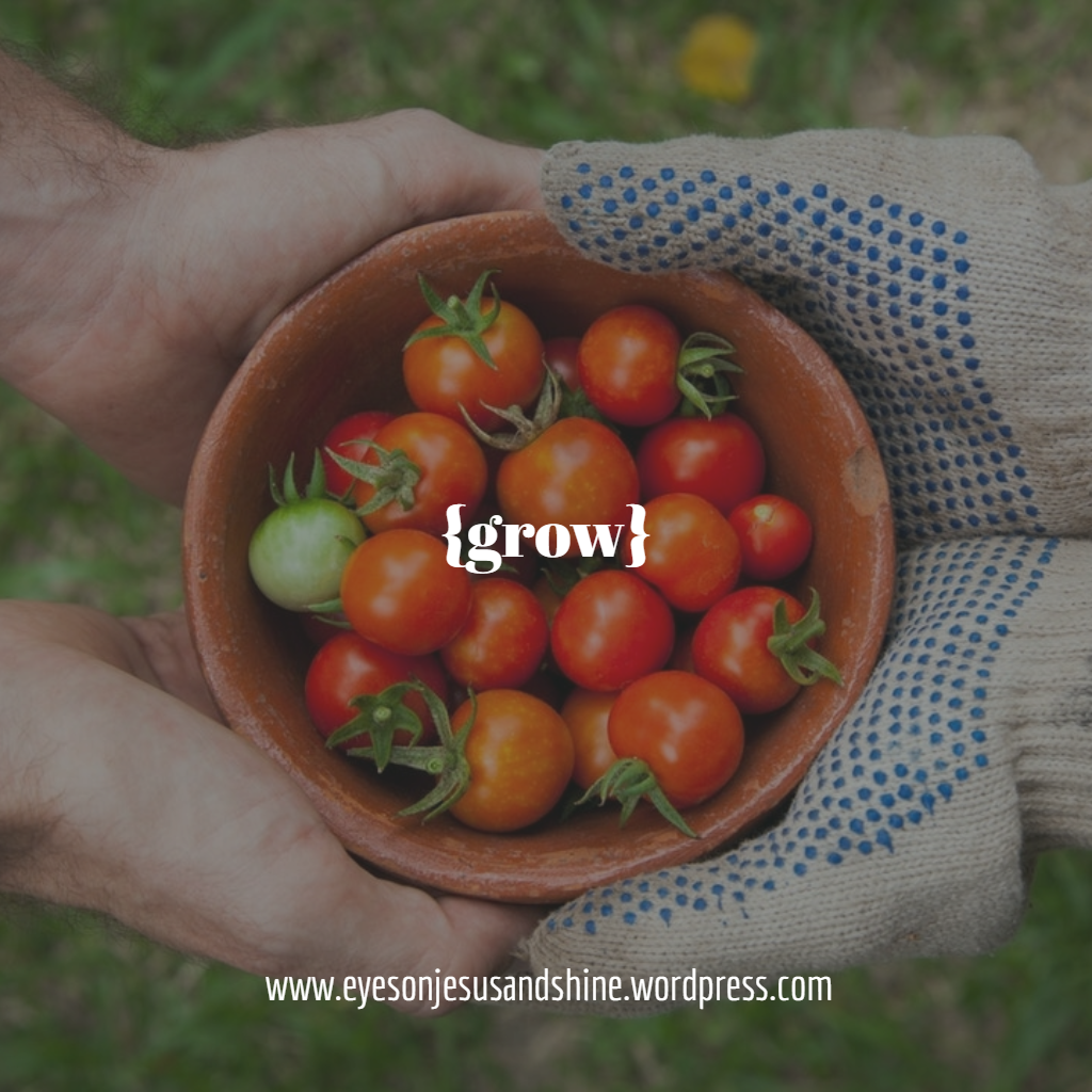grow tomatoes.png