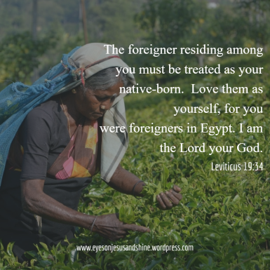 leviticus foreigners