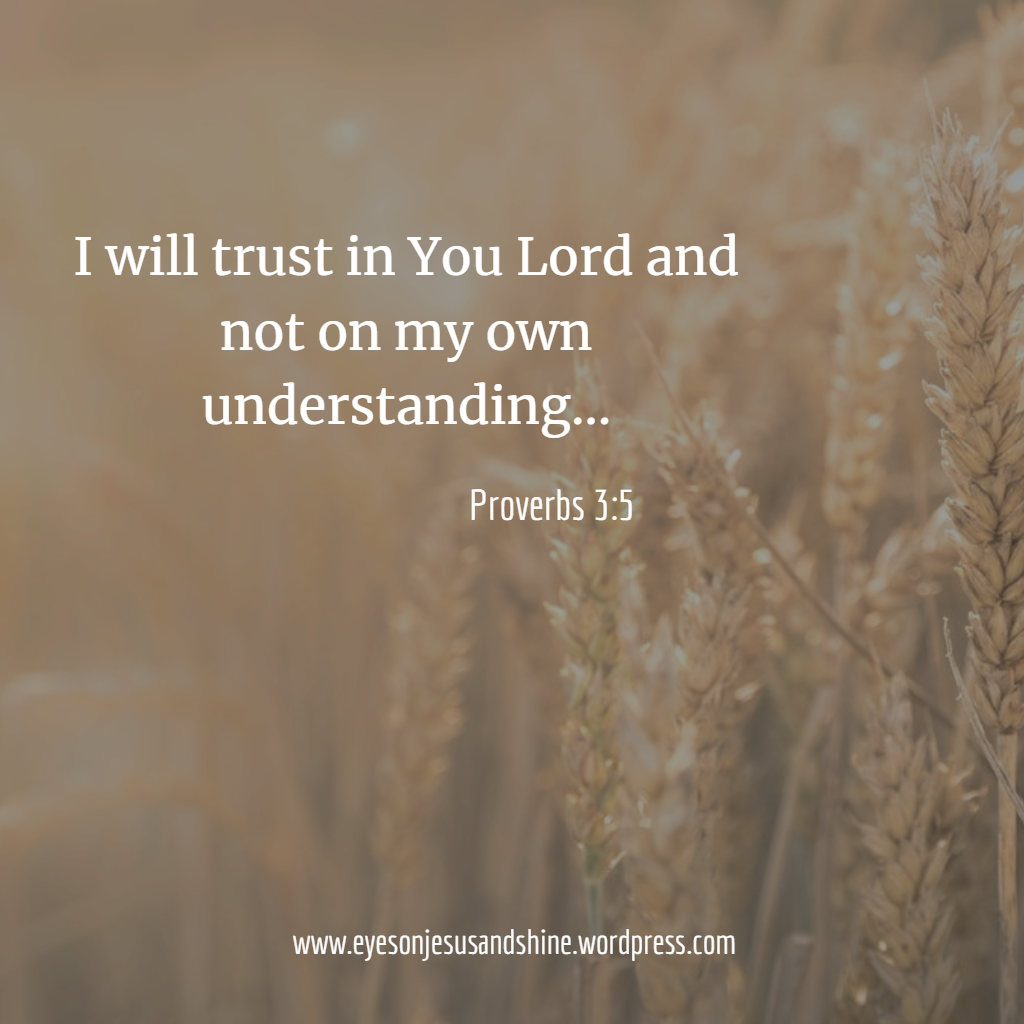proverbs 3.5.png