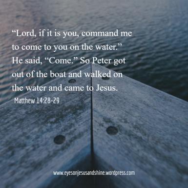 Matthew 14.28