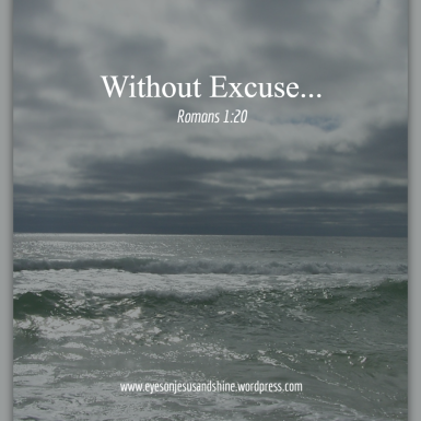 ocean without excuse