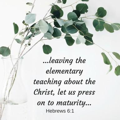 maturity Hebrews 6.1 MG